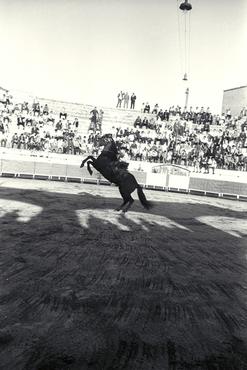 Imatges del reportatge 779417 - Corrida de toros a Olot