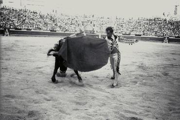 Imatges del reportatge 779887 - Corrida de toros a Girona