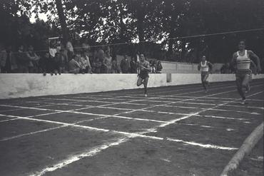 Imatges del reportatge 779157 - Proves d'atletisme del GEiEG a la Devesa