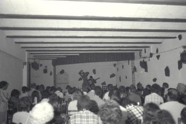 Imatges del reportatge 779159 - Espectacle de flamenc en una sala
