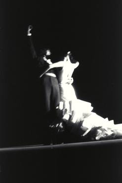 Imatges del reportatge 780042 - Espectacle de flamenc