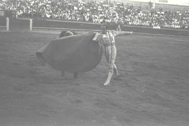 Imatges del reportatge 779383 - Corrida de toros a Girona