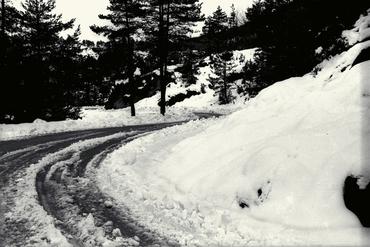 Imatges del reportatge 779200 - Neu a la carretera de la Cantina d'Olot a Ripoll