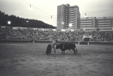 Imatges del reportatge 779849 - Cursa de braus a Girona