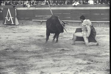 Imatges del reportatge 780222 - Corrida de toros a Girona