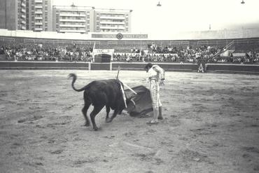 Imatges del reportatge 779853 - Corrida de toros a Girona