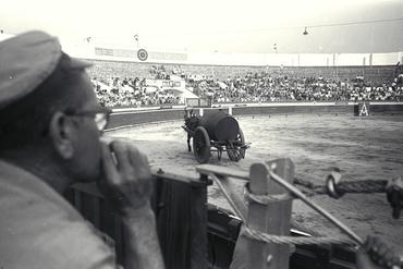 Imatges del reportatge 780260 - Corrida de toros a Girona
