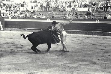Imatges del reportatge 780259 - Corrida de toros a Girona