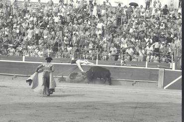 Imatges del reportatge 780254 - Corrida de toros a Girona