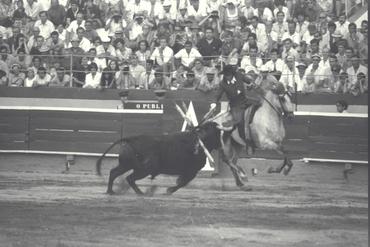 Imatges del reportatge 779632 - Corrida de toros a Girona