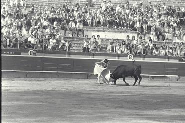 Imatges del reportatge 780198 - Corrida de toros a Girona