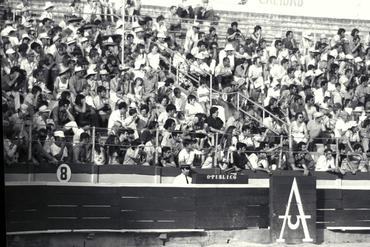 Imatges del reportatge 779858 - Cursa de braus a Girona