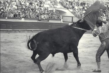 Imatges del reportatge 778870 - Corrida de toros a Girona