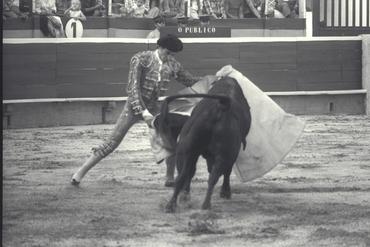 Imatges del reportatge 780066 - Cursa de braus a Girona