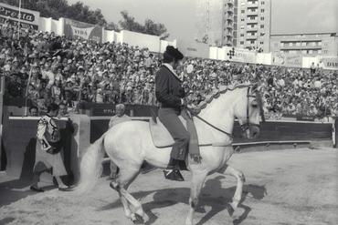 Imatges del reportatge 779472 - Cursa de braus a Girona