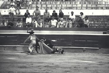 Imatges del reportatge 778559 - Corrida de toros a Girona