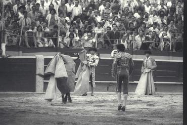 Imatges del reportatge 779642 - Corrida de toros a Girona