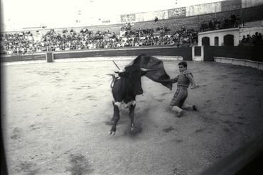 Imatges del reportatge 780104 - Corrida de toros a Girona