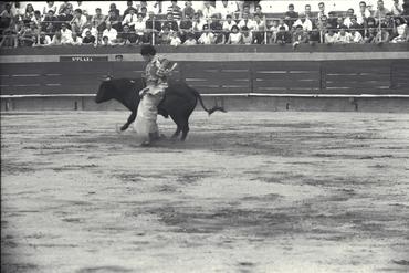 Imatges del reportatge 779601 - Corrida de toros a Girona amb la torera Paquita Rocamora