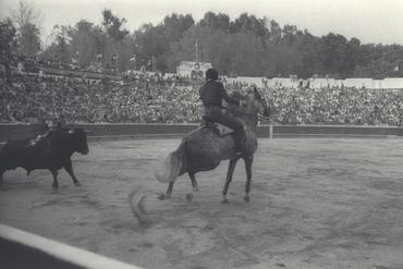 Imatges del reportatge 779850 - Corrida de toros a Girona