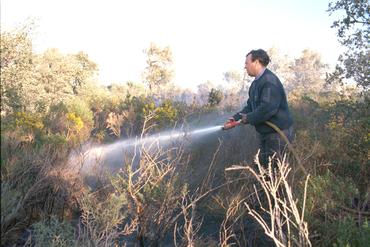 Imatges del reportatge 780848 - Incendi a Cantallops