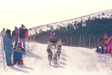 Imatges del reportatge 780901 - Arribada de la cursa de trineus Pirena