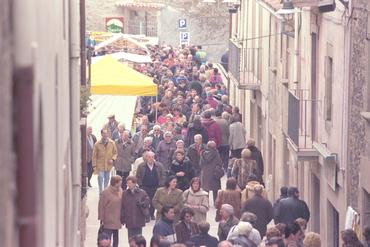 Imatges del reportatge 780967 - Fira de Sant Antoni