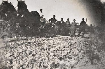 Imatge 51860 - Pagesos llaurant un camp