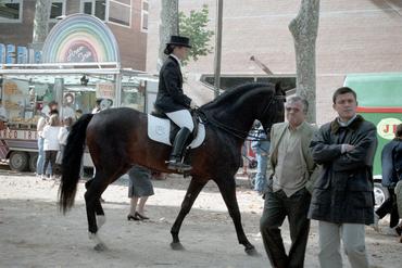 Imatges del reportatge 781288 - Equus Catalonia