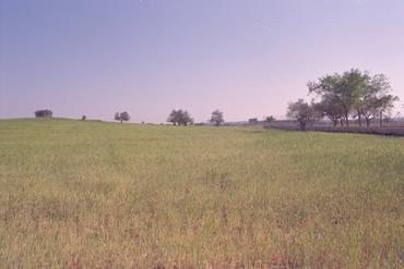 Imatges del reportatge 781156 - Terrenys del nou IES de Vilafant
