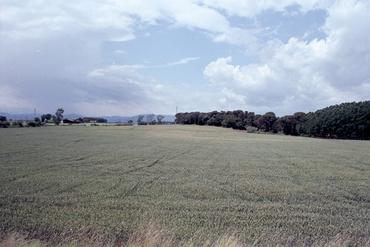 Imatges del reportatge 781320 - Terrenys de l'area de serveis de Riudellots de la Selva