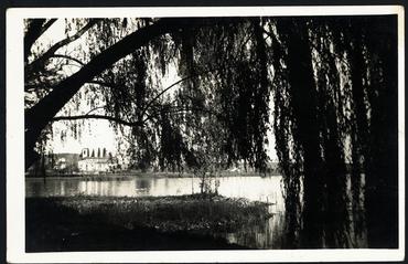 Imatge 54807 - L'estany de Banyoles des del paratge dels Desmais