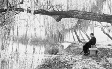 Imatge 54817 - Home pintant a la riba de l'estany de Banyoles