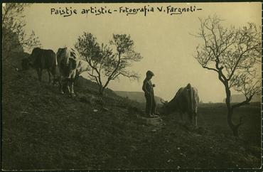 Imatges representants - Fons i col·lecció Emili Massanas i Burcet