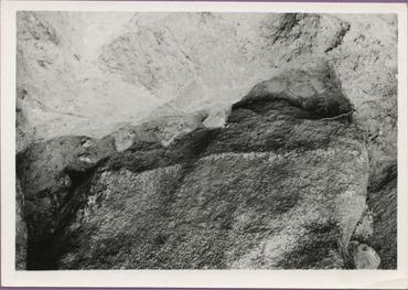 Imatges del reportatge 783590 - Dolmen de la Font del Roure, a Espolla