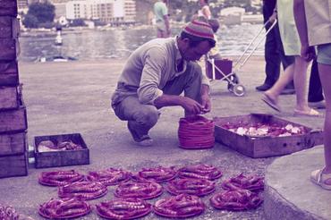 Imatges del reportatge 1122545 - Llotja de peix i marisc