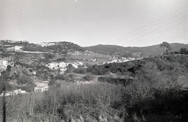 Imatges del reportatge 782786 - Vall de Sant Daniel